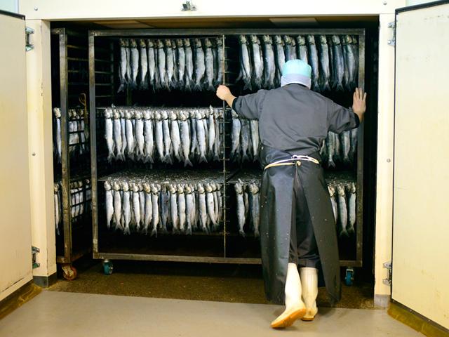 身欠きにしんの伝統製法-乾燥庫に入れる